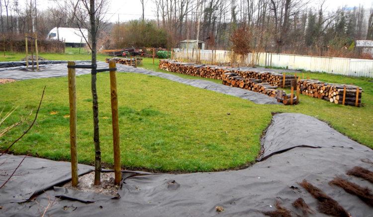 Jardin de campagne à Bruxelles