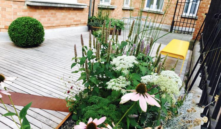 Jardin-terrasse verte