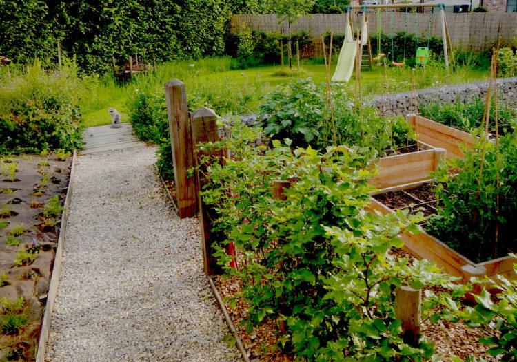 Lignes et nature au jardin